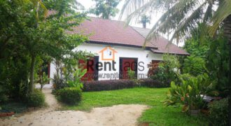 house near KIS for rent