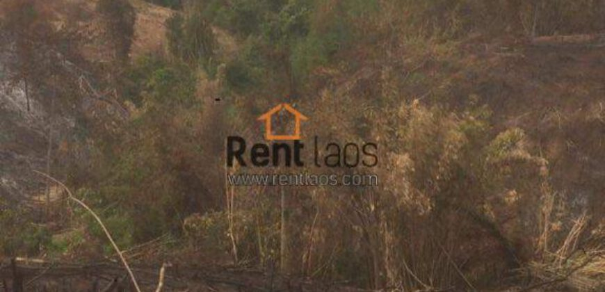 Agriculture land for lease