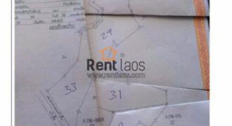 65 hector land near vientiane for sale